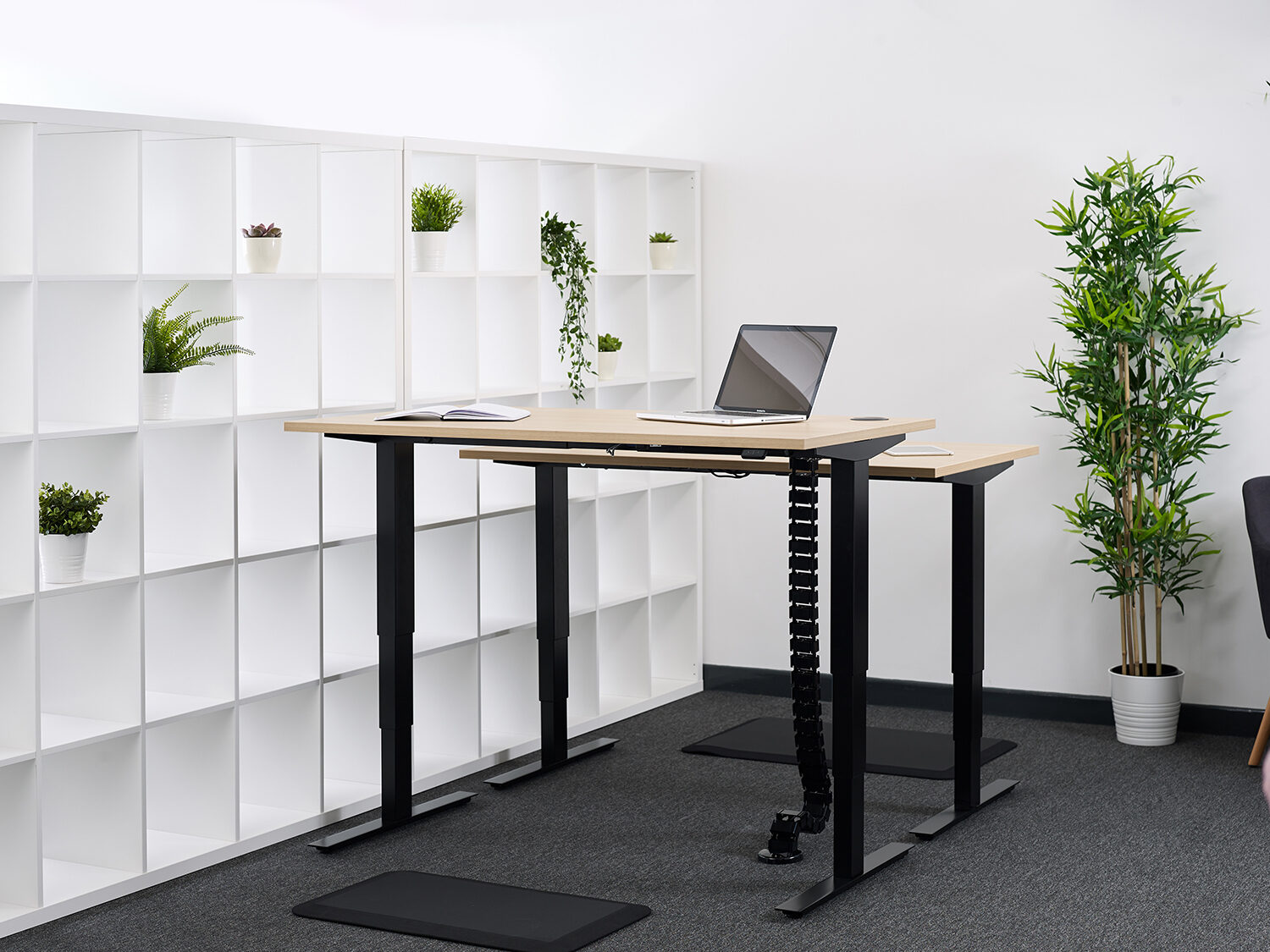 Sit Stand Solutions